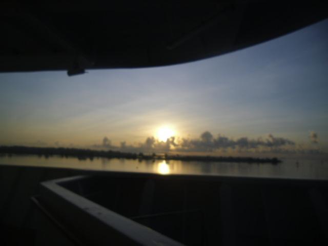 dawn0301.jpg